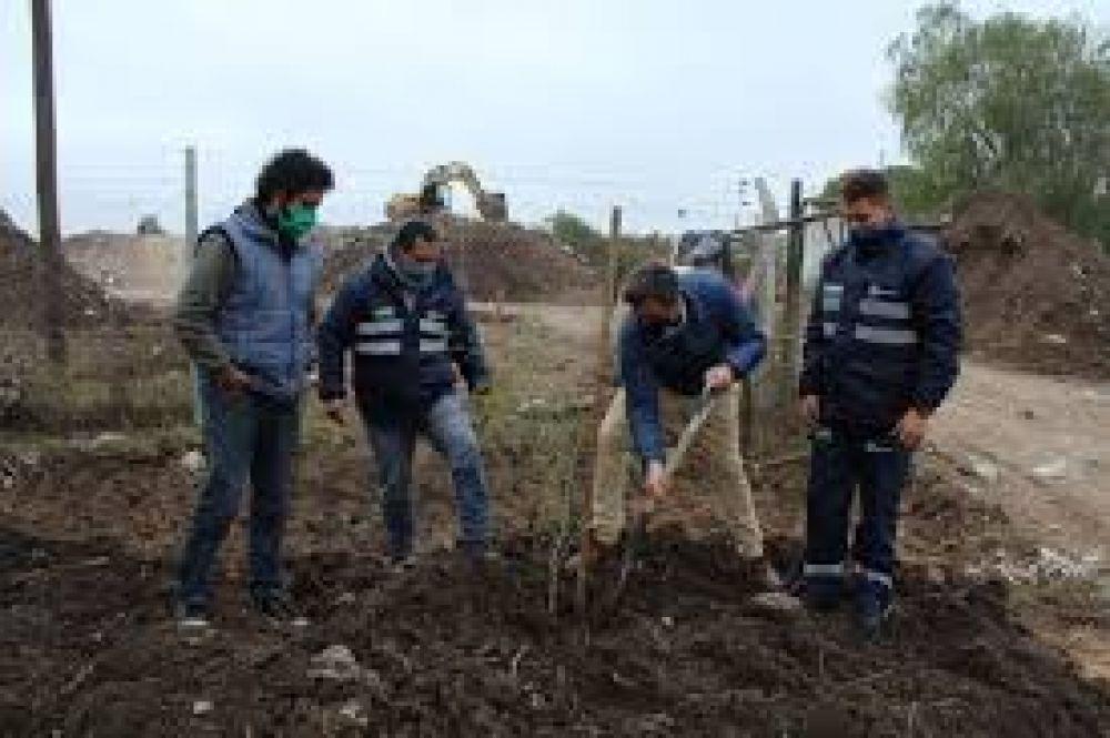 Plantan árboles nativos en el predio del Basural