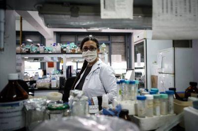 Coronavirus en la Argentina: el Conicet desarrolló un cañón de ozono para desinfectar espacios públicos