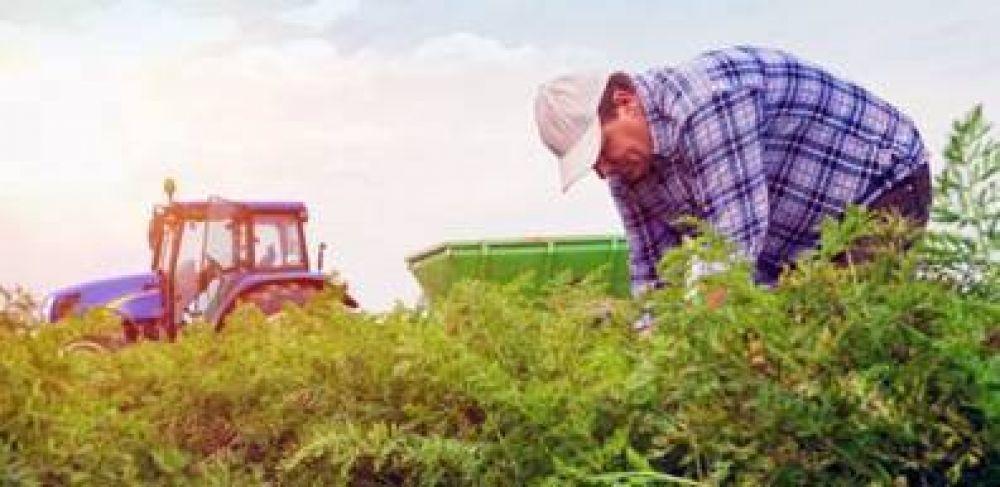 La Pampa: Capacitación a distancia para trabajadores rurales