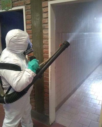 Continúan los operativos de fumigación y desinfección