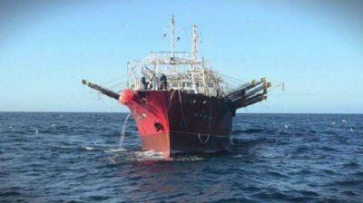 Capitanes de pesca denunciaron depredación del calamar y otras irregularidades