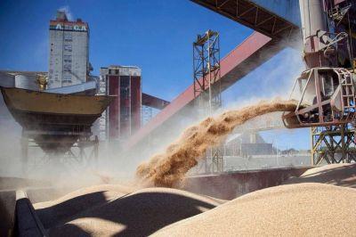 La nueva Vicentin: el plan de Alberto Fernández para la cerealera