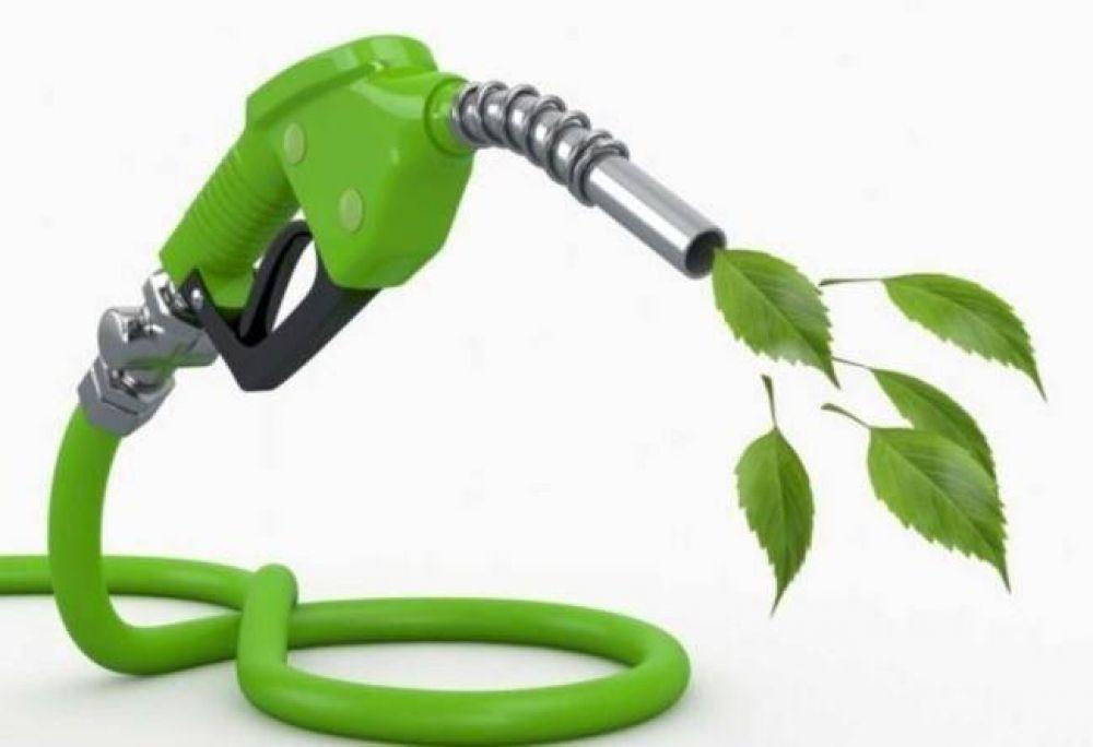 Vicentin: preocupación del sector de biocombustibles