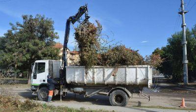 Retiraron 380 toneladas de basura