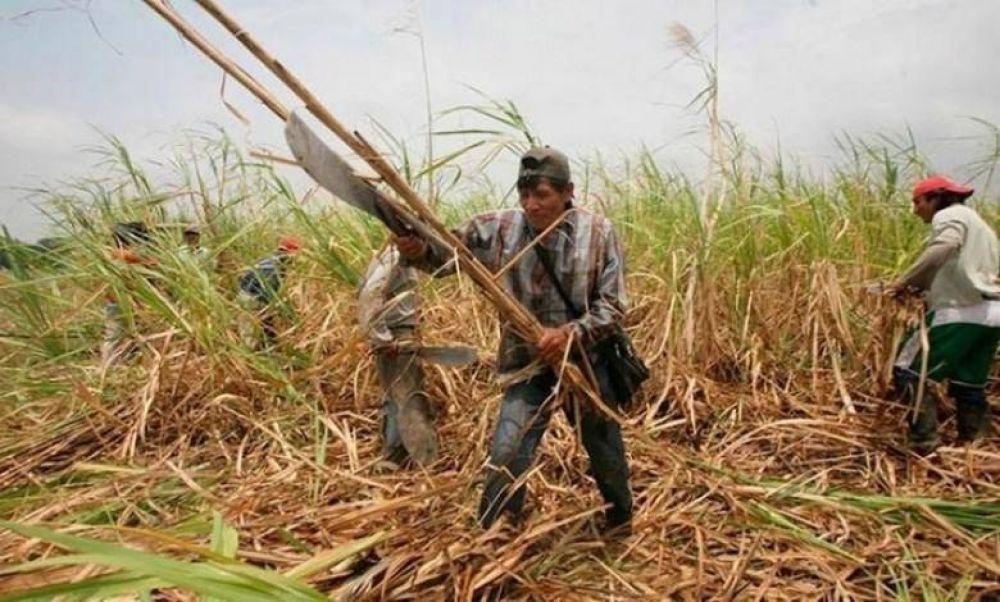 Paritarias en Tucumán: Gremio de azucareros acuerda un aumento del 38%