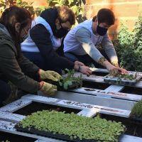 Instalan una huerta orgánica para ayudar a un comedor
