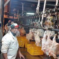 Alimentación cerró aumentos y una suma fija para el sector avícola