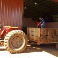 Más viviendas rurales para tabacaleros en San Vicente