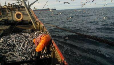 Los marineros denuncian que quieren bajarle los salarios y arrancan un paro total en la pesca