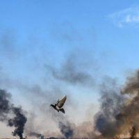 Cese al fuego mundial: el Papa apoya la Resolución del Consejo de Seguridad de la ONU