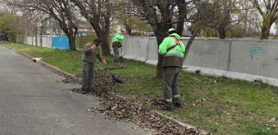 Nuevos operativos de limpieza y mantenimiento de espacios públicos en Quilmes