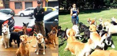 """Trabajadores caninos vuelven a la actividad en la Ciudad de Buenos Aires """"gracias a la lucha colectiva"""""""