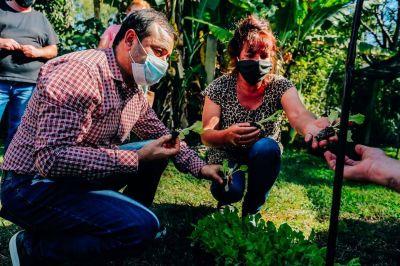 Entregaron plantines hortícolas a productores de la zona norte de Misiones