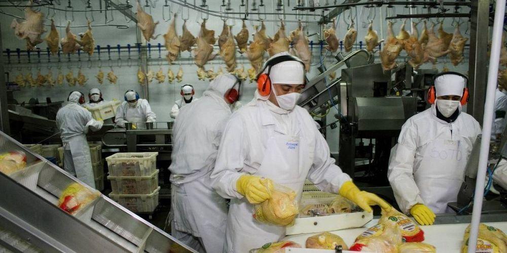 Federación de la Carne sella paritaria corta para los avícolas y suma 12% adicional hasta noviembre
