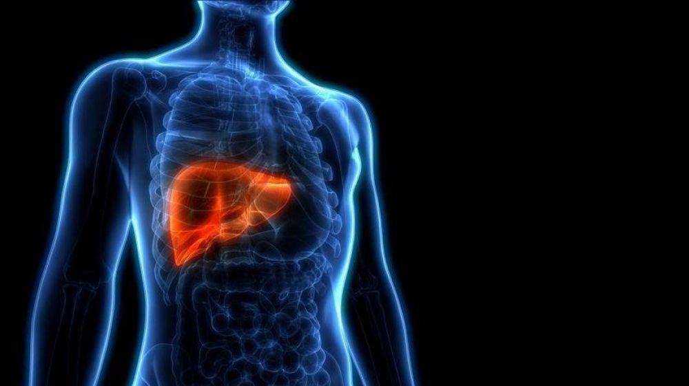 Más de 500 mil argentinos viven con hepatitis B y C y el 70% no lo sabe