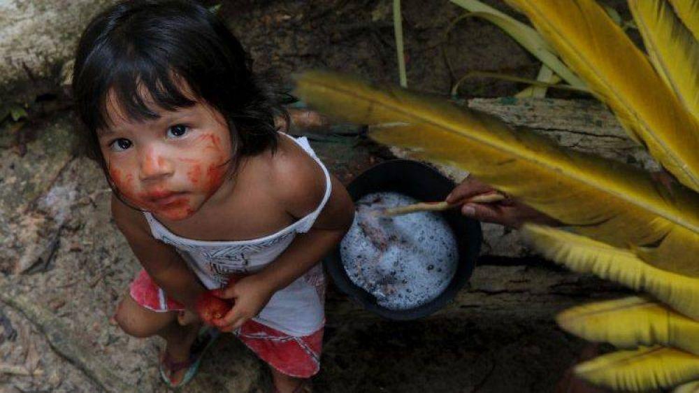 Alegría del Papa por la solidaridad entre familias rurales de Brasil