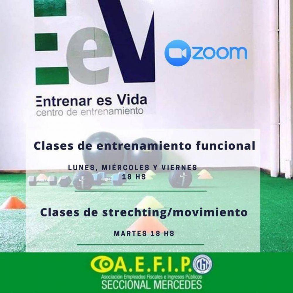 Entrenamiento para afiliados de AEFIP