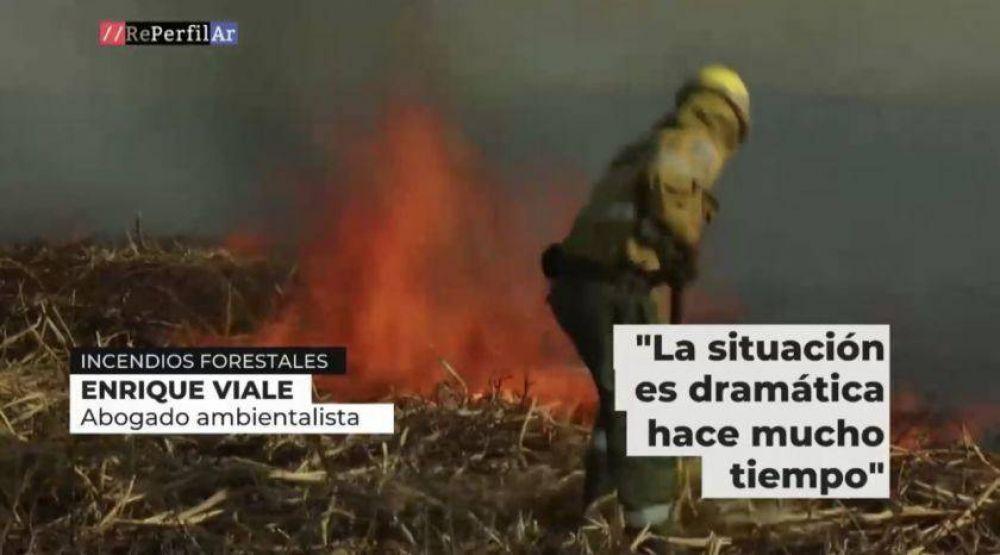 Humo en la provincia por la quema de pastizales del Delta de Paraná
