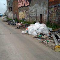 Vecinos denuncian basural a un costado de las vías del tren