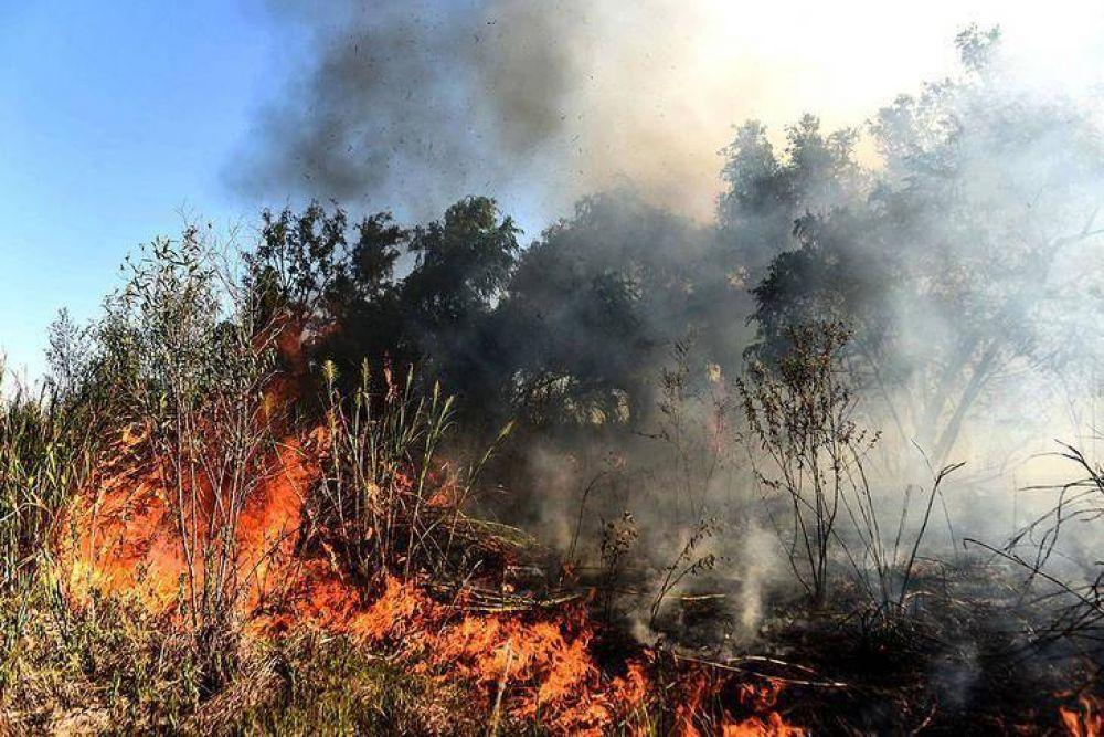 Incendios en el Delta: primeras señales desde la Corte Suprema