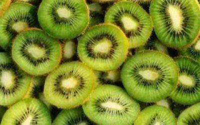 Alvarado, zona de baja prevalencia de mosca de los frutos: Destacan avance para comercialización de kiwi