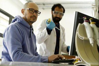 Científicos de la UNLP determinaron por qué el coronavirus evade las respuestas inmunes