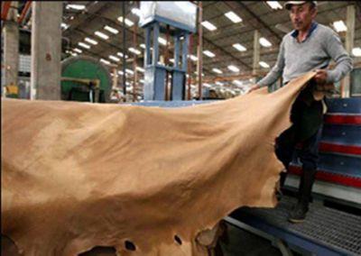 Los trabajadores del cuero de Argentina y Uruguay en estado de alerta y movilización