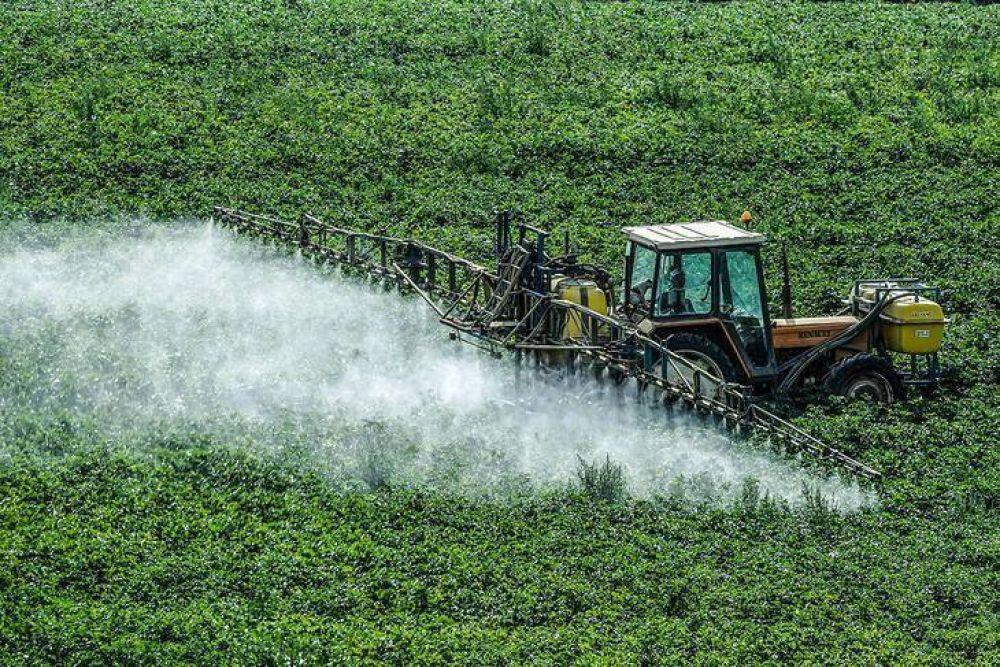 """Un informe del INTA recomienda """"fuertemente"""" la reducción de agrotóxicos en los cultivos"""