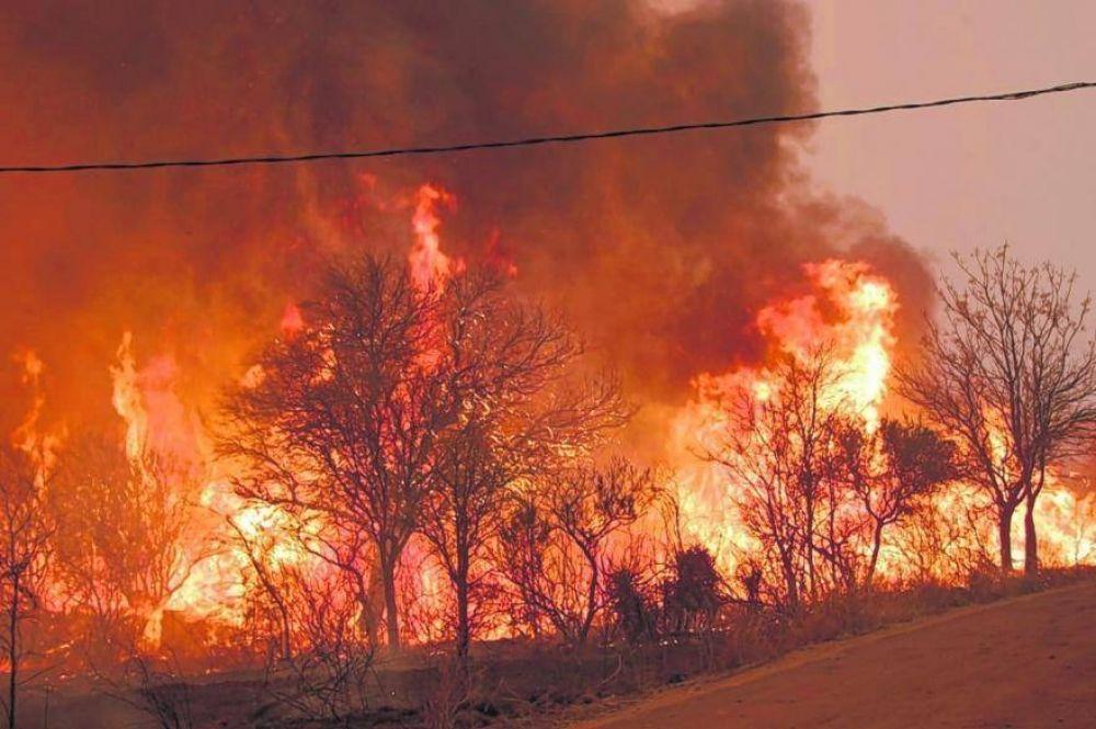 """Fuerte advertencia de la ONG Nuevo Ambiente: """"Tenemos un país que se está incendiando"""""""