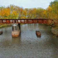 El municipio de La Plata impulsa un proyecto para preservar los humedales