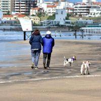 Hay 217 nuevos contagiados de coronavirus en Mar del Plata