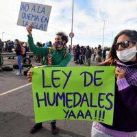 """Recrudecieron los incendios en las islas del Delta y ambientalistas ya hablan de """"desastre socioambiental"""""""