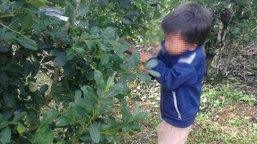 Misiones: Violento desalojo a mujeres de nuevo sindicato rural que luchan contra el trabajo infantil