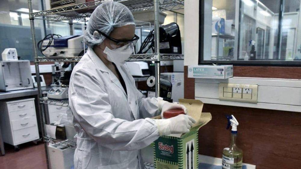 Informan 11.249 nuevos casos de coronavirus en el país y el total asciende a 702.484