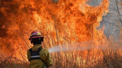 Por los incendios, declararon la emergencia agropecuaria en algunas zonas de Córdoba