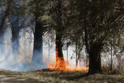 Arden las sierras en múltiples zonas de provincia de Córdoba