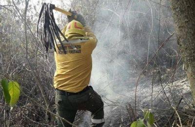 Advierten que el incendio en el cerro San Javier traerá consecuencias ambientales de grandes magnitudes