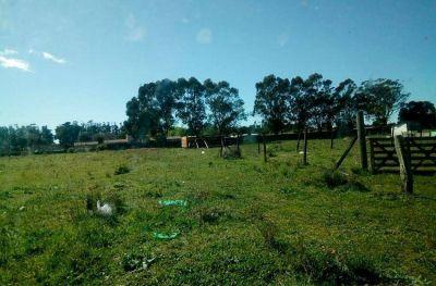 Denuncian aumento del delito y usurpaciones de terrenos en barrios de la zona norte de Mar del Plata