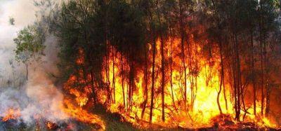 Misiones entre las provincias con focos de incendios activos