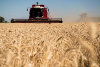 El PRO le prende fuego a la interna entre la Sociedad Rural y el Consejo Agroindustrial