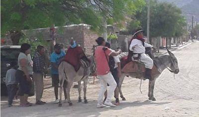 Cafayate: A lomo de burro llevó a la Virgen en procesión y emocionó a todos