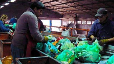 Reciclado: cómo se recuperan los materiales en Mar del Plata