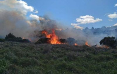 Llegó el fuego a la Provincia de Buenos Aires y se encendieron las alarmas