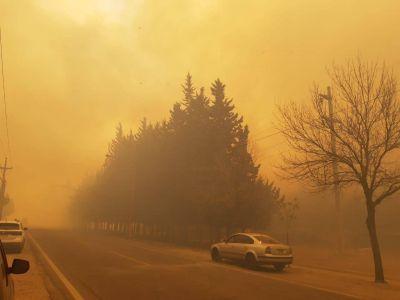 Ocho dotaciones de bomberos combatieron un incendio en Juana Koslay