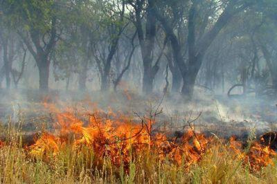 Informe del INTA alerta sobre la posibilidad de incendios en La Pampa