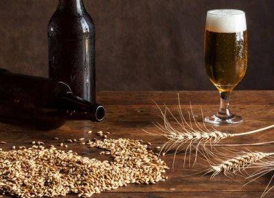 """Se aprobó la ordenanza PUPAs: Habilitación que incorpora a """"viñateros y cerveceros locales"""""""
