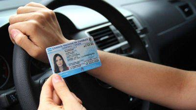 Atención Neuquén: continuará suspendida la emisión de licencias de conducir