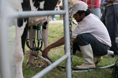 Productores lecheros advirtieron sobre la crisis que atraviesa el sector
