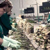 Provincia creó un programa de capacitación laboral con perspectiva de género
