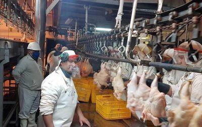 Paritarias: Alimentación cerró un aumento del 20% para trabajadores avícolas